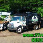 truckslinedup